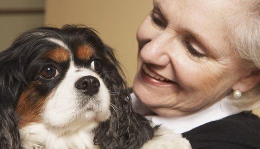 Seu coração bate em sincronia com o do seu cachorro!