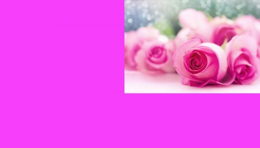 Meu Outubro Rosa